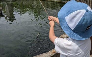 ゲームに夢中の子供と管理釣り場を満喫 釣り好きにさせるコツとは?