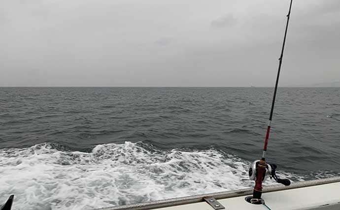 相模湾マルイカ釣りで84匹 敢えての「雨の日」狙いが的中?【一俊丸】