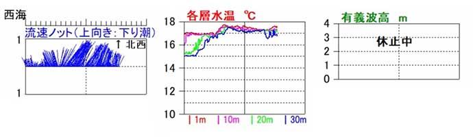 能登で「ブリ」シーズン開幕 ジギングで船中100匹超え【石川・遊心丸】