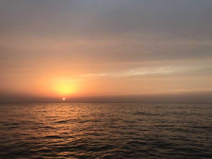 アジ泳がせヒラメ釣行 ナイトゲームで本命船中23枚【新潟・金栄丸】