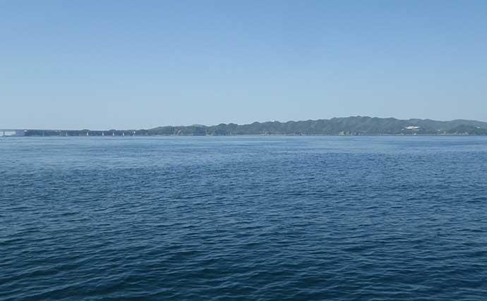 ボートジギングで青物&マダイ 季節外れのメジロも登場【徳島・鳴門】