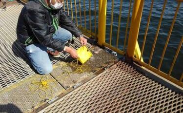 釣行前に知って欲しい「片付け」術:サビキ釣り まきエサ処理と風対策