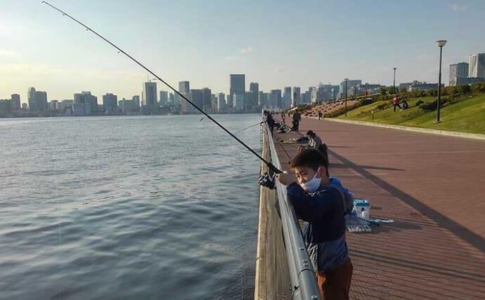 今さら聞けない『チョイ投げ小物釣り』のキホン:簡単にできる釣り方