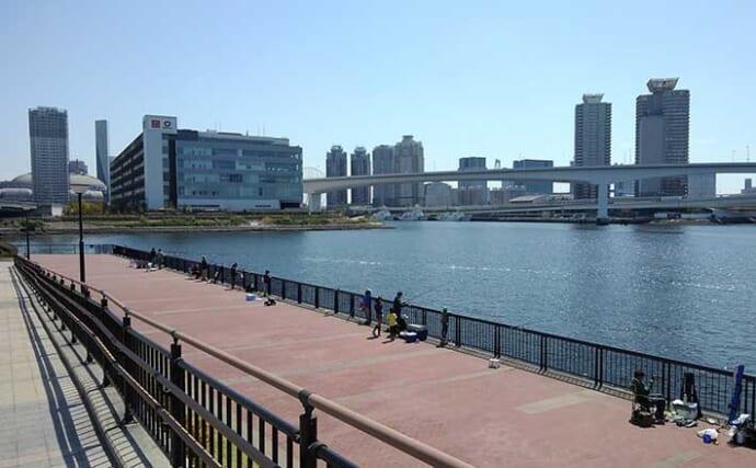 今さら聞けない『チョイ投げ小物釣り』のキホン:東京湾特選釣り場3選