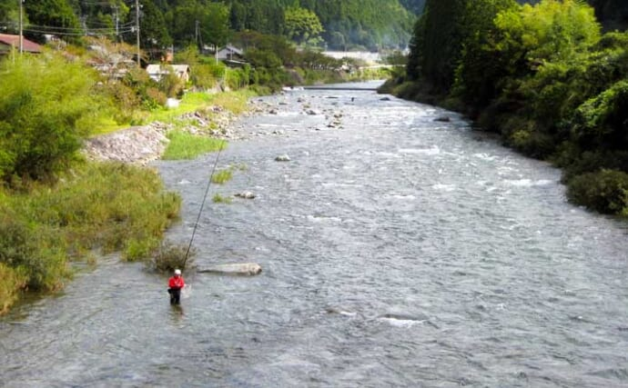 【2021岐阜】鮎トモ釣りオススメ河川:飛騨川 2段階方式で6月中に解禁