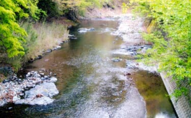 【2021山梨県】鮎トモ釣りオススメ河川:秋山川 ビギナーも釣りやすい