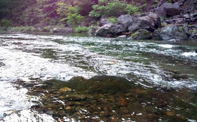 【2021群馬】鮎トモ釣りオススメ河川:神流川 好条件揃った人気河川