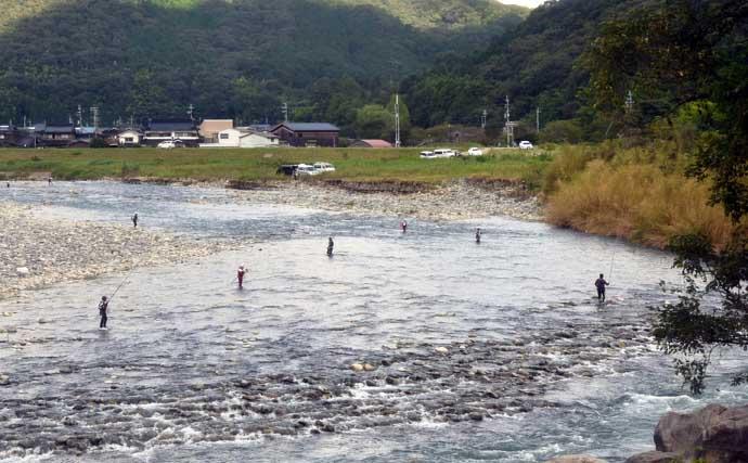 【2021兵庫】鮎トモ釣りオススメ河川:揖保川 35cm超の実績あり