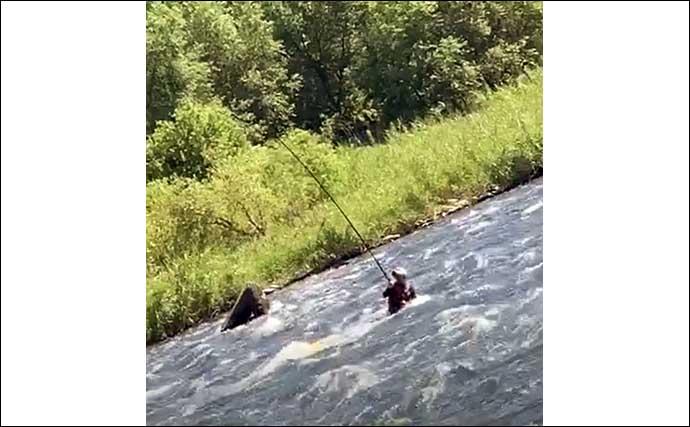 【2021福井】鮎トモ釣りオススメ河川:九頭竜川中部漁協管内 大型狙える