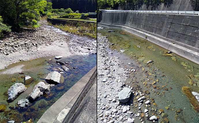 【2021三重】鮎トモ釣りオススメ河川:櫛田川上流 オトリ止めて釣る?