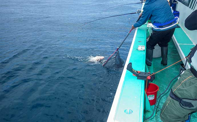 イシナギ釣りで好釣 期間限定の大物釣りに注目【茨城・モンロー号】
