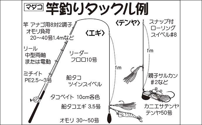 【東京湾2021】テンヤマダコ釣り初心者入門 タックル&釣り方を解説