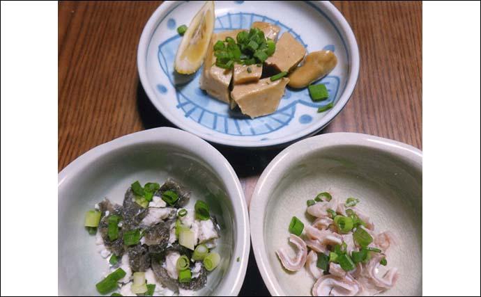 釣りのゲスト魚を美味しく食べよう:マトウダイ 皮や胃袋も捨てちゃダメ