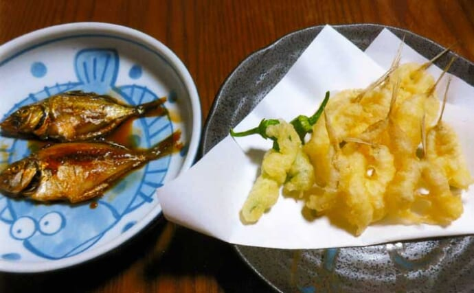 釣りのゲスト魚を美味しく食べよう:ヒイラギ&ヌメリゴチ 下処理が重要