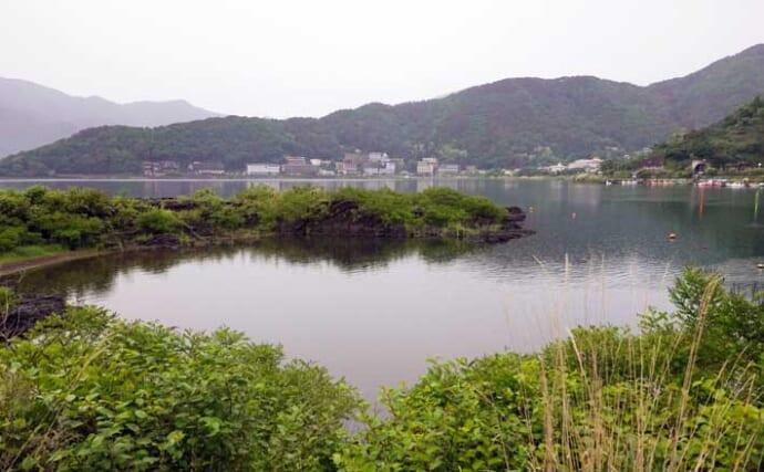 今週の関東ヘラブナ推薦釣り場【山梨県河口湖・陸っぱり】