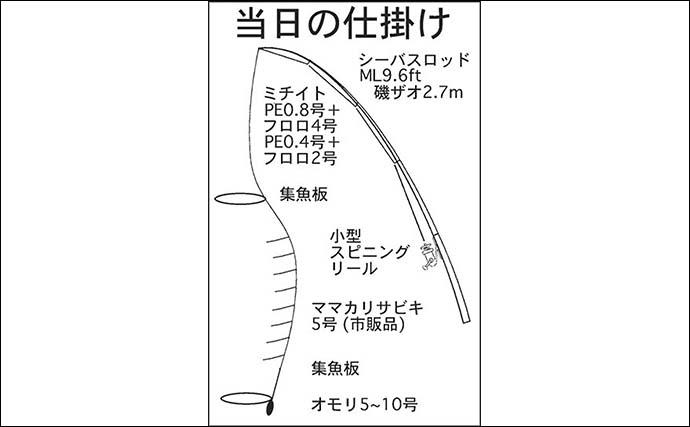 堤防サビキ釣りでサッパ40匹 サプライズに50cmヒラメ【三重・四日市港】