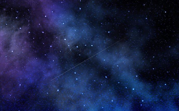「星」が付いているサカナたち 季節限定の『追星』は繁殖と関係あり