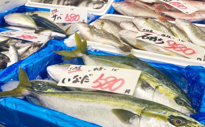 ちょっと危険なサカナの地方名 「ハゲ」に「チンチン」は何の魚?