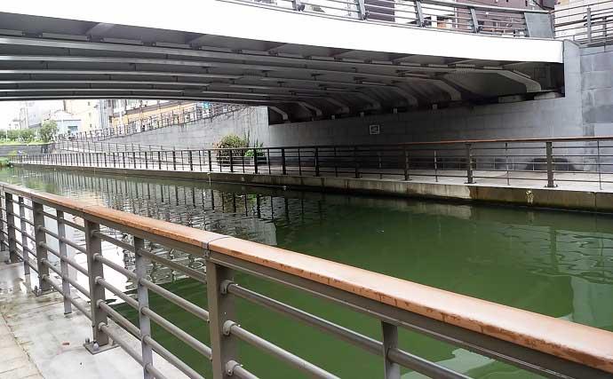 スカイツリー下でハゼ釣り 雨天対応ポイントで20匹【東京・北十間川】