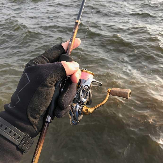 海のルアー釣りを始めよう:アジを狙う『アジング』ってどんな釣り?