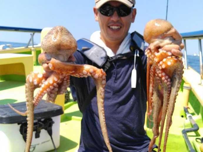 昨日ナニ釣れた?沖釣り速報:東京湾のマダコ釣りシーズン到来【関東】