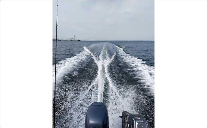 大阪湾ボートサビキ釣りで45cmアジ マジックでの仕掛け色変更がアタリ?