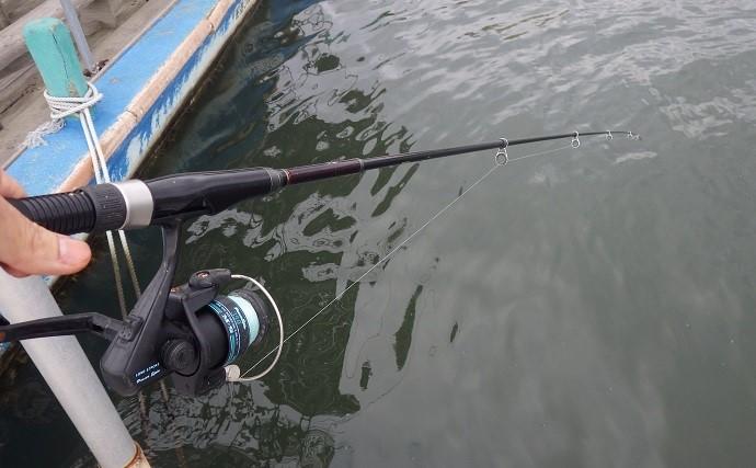 江戸川放水路『ハゼ釣り』開幕 桟橋デキハゼ釣り堪能【たかはし遊船】