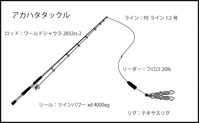 アカハタゲームで本命3匹 大きめのワームがキモ?【神奈川・真鶴半島】
