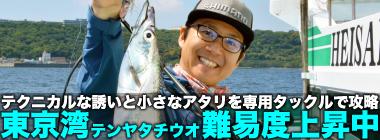 東京湾テンヤタチウオが難易度アップ傾向 専用タックルでの挑戦が吉?