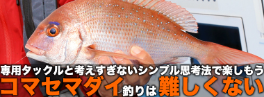 コマセマダイ釣りは「シンプル」に考えよう 名手が専用ロッドで本命3尾