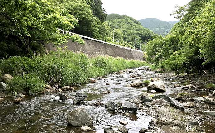 オリジナル仕掛け『二本毛バリ・テンカラ』でヤマメに挑戦【埼玉】