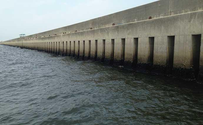 大阪湾「波止フカセチヌ』入門:代表的な3つの釣り場の特徴を押さえよう