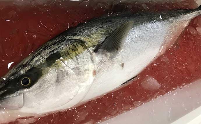 釣り人的『スーパーライトDIY(SLD)』:クーラーボックス