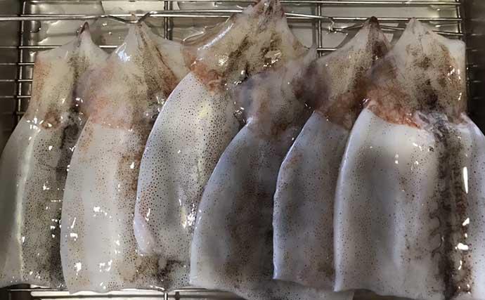 釣り人的「食品ロス」削減レシピ:津軽のイガめんち お弁当にも好適