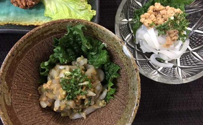 【釣果レシピ】ムギイカお刺身アレンジ2選 イカ納豆&イカのなめろう