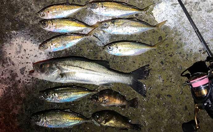 今さら聞けないルアー釣りのキホン:代表的ライン種類と使い分け術