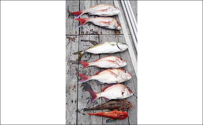 【三重】沖釣り最新釣果 多彩な魚種が狙える引本浦で良型ヒラメ浮上