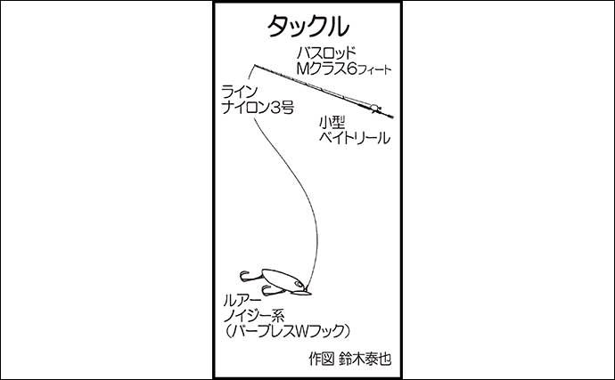 近場の河川でトップウォーターゲーム 60cm頭にライギョ2尾手中【福岡】