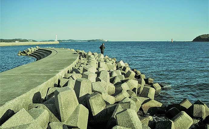 空き時間で堤防「穴釣り」を満喫 小型ながらメバルにクジメ【愛知】