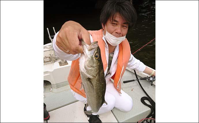 【2021東京湾】夏のシーバスジギング 落として巻くだけで釣果有望