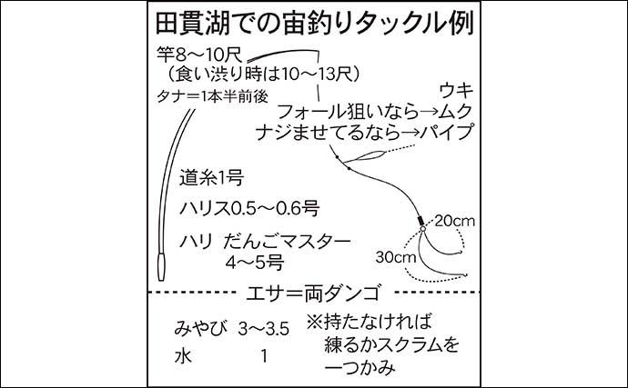 今週のヘラブナ推薦釣り場【静岡・田貫湖】