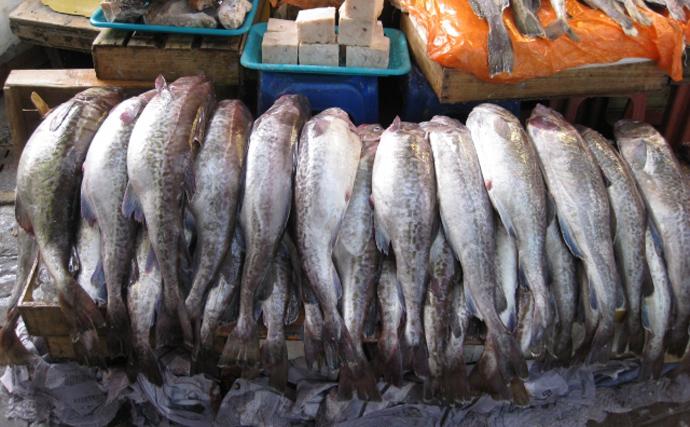 庶民の味方「魚肉製品」が高騰の兆し 需要増はコロナウイルスの影響?