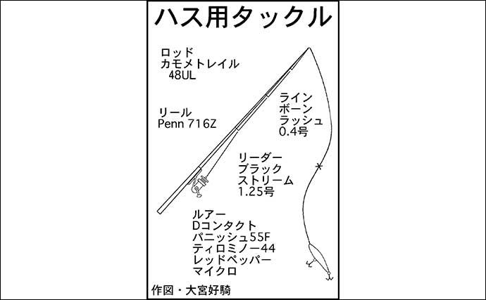 琵琶湖リレー釣りが面白い ハスゲーム&小アユ釣り堪能【滋賀】