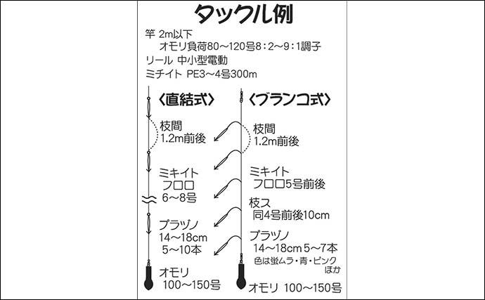 【関東2021】船スルメイカ釣り入門 ブランコ&直結仕掛けのキホン