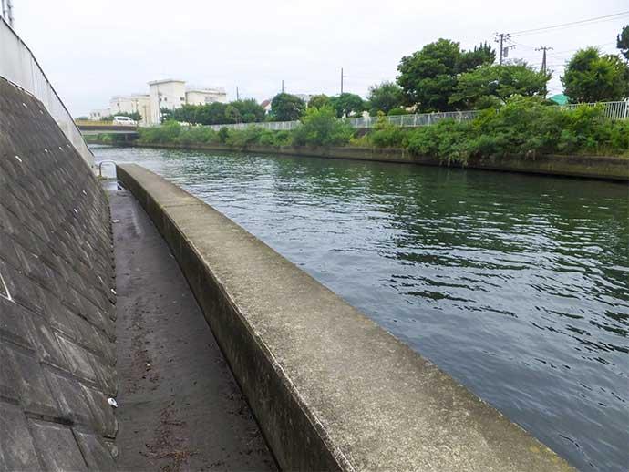 ハゼ&テナガエビの好釣り場紹介:横浜〜藤沢市【神奈川】