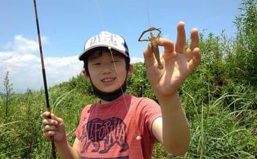 息子と楽しむテナガエビ釣り 止水エリア狙い連発【神奈川・酒匂川】
