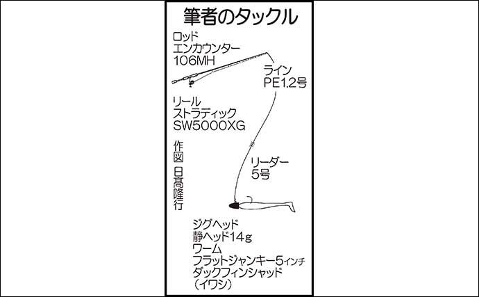 ナイトシーバスゲームで40cm&75cmキャッチ 高速巻きがパターン【熊本】