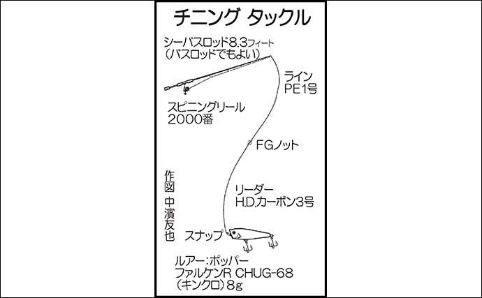 夏はトップチニングゲームが面白い 46cm頭にチヌ2尾【鳥取・中海】