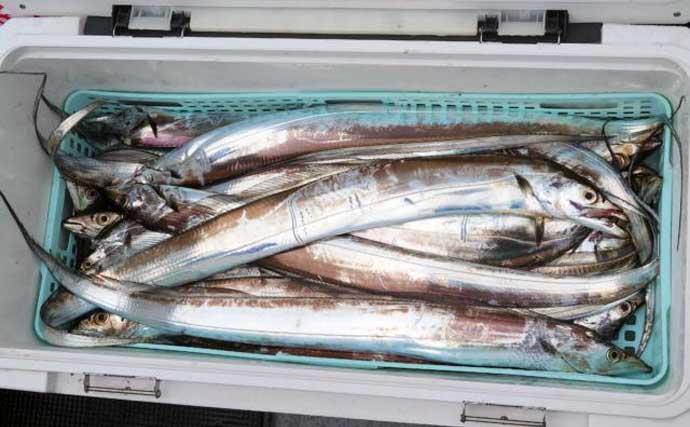 【福岡】沖のエサ釣り最新釣果 手軽な良型アジにタチウオ数釣りの好機