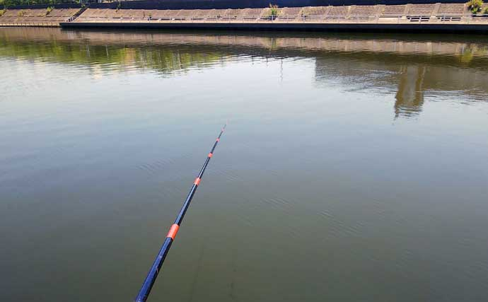 ハゼ釣りで数釣り達成 3時間のミャク釣りで76尾手中【千葉・境川】